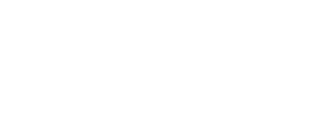 Bellevue Investors